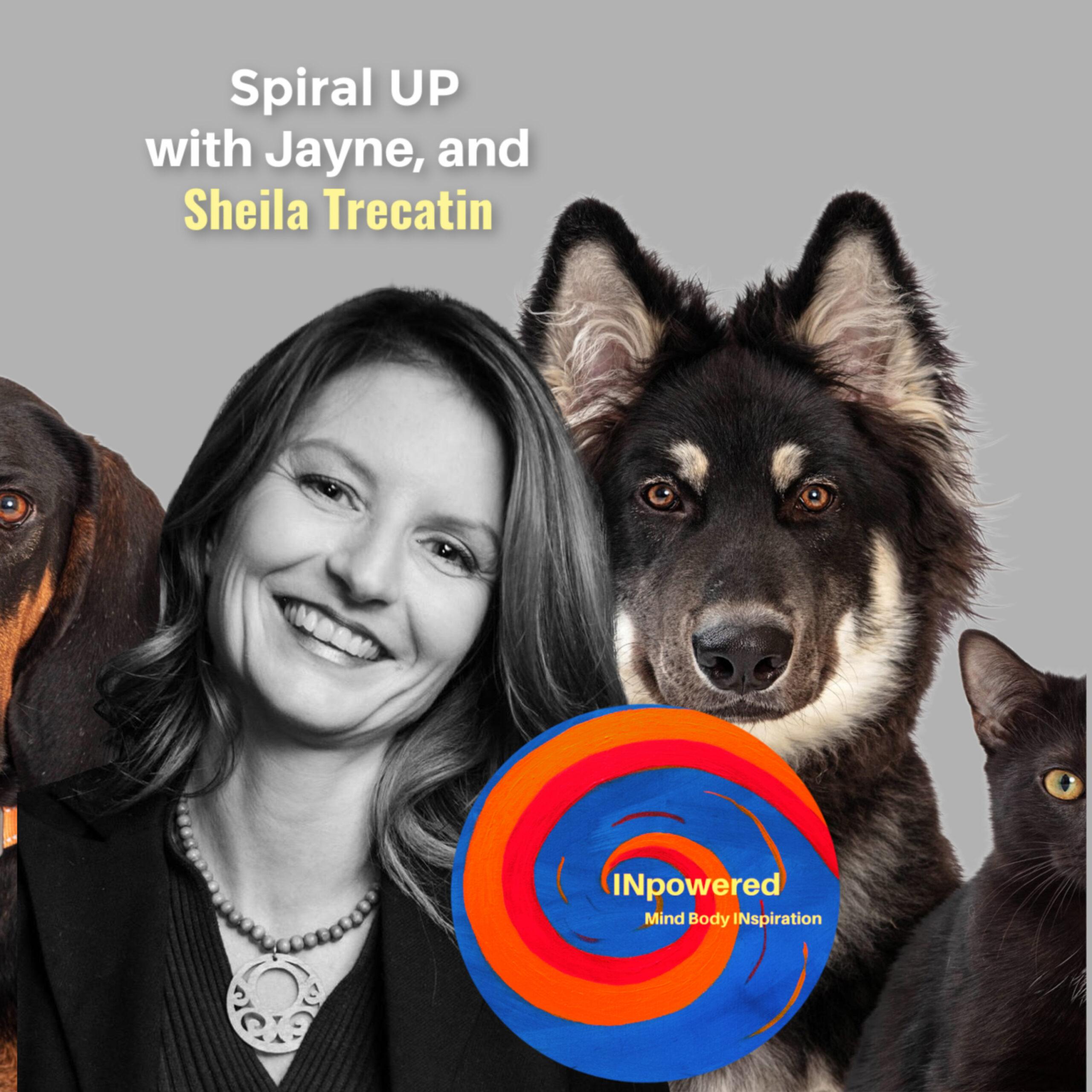 Animal Communication with Sheila Trecartin!